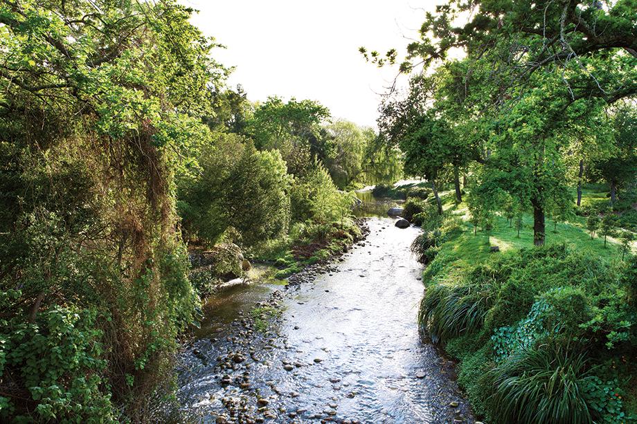 River-Walk-920